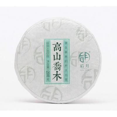 后月白茶 2018头春高山乔木 200克/饼
