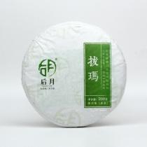 【新品上市】2020年 后月拔瑪头春茶 普洱茶生茶  200克/饼