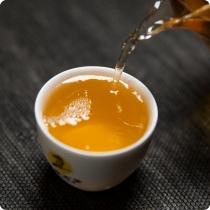 吉山-生茶-头图-02