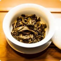 尚德-生茶-头图-04
