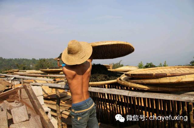 李明/李明专栏:革登茶山的历史语境与现实使命