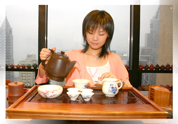 普洱茶的泡法