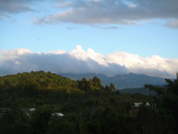 勐棒农场风景